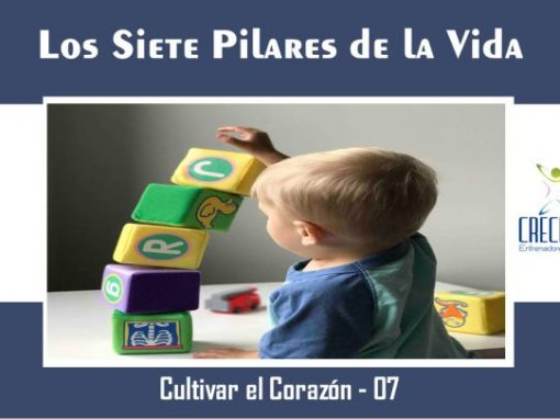 Protegido: Cc07 Los 7 Pilares de la Vida
