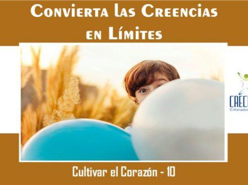 Protegido: Cc10 Convierta las Creencias en Límites