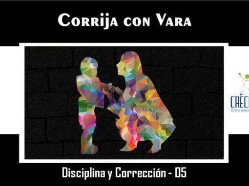 Protegido: Dyc05 Corrija con Vara