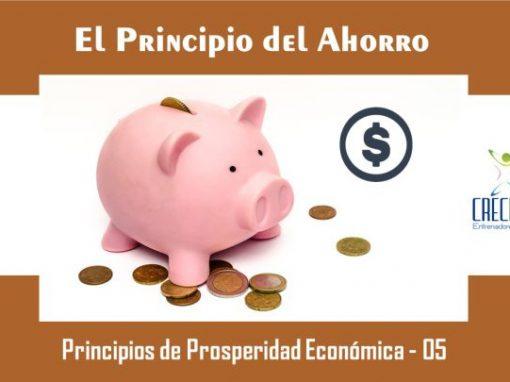Protegido: Pf05 El Principio del Ahorro