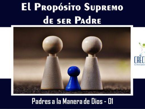 Protegido: Psd01 El Propósito Supremo de ser Padre