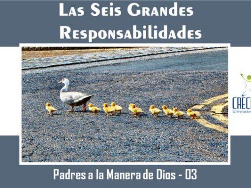 Protegido: Psd03 Las Seis Grandes Responsabilidades