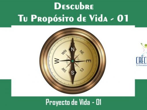 Protegido: Pv01 Descubre tu Propósito de Vida