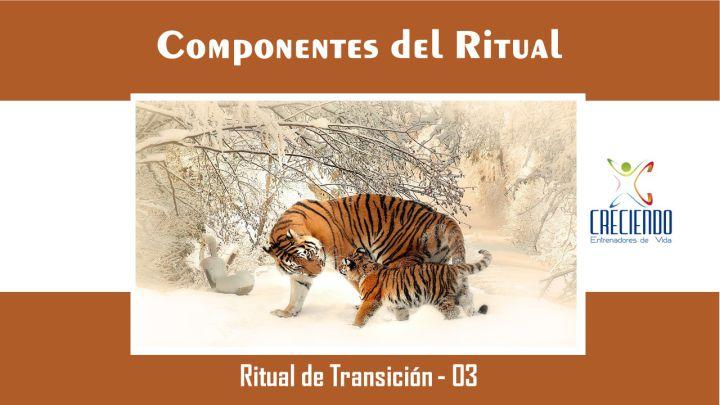 Protegido: Rt03 Componentes del Ritual