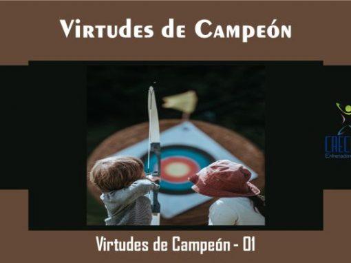 Protegido: Vc01 Virtudes de Campeón