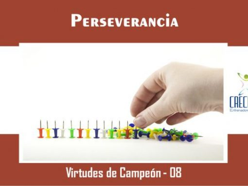Protegido: Vc08 Perseverancia