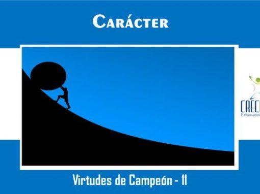 Protegido: Vc11 Carácter